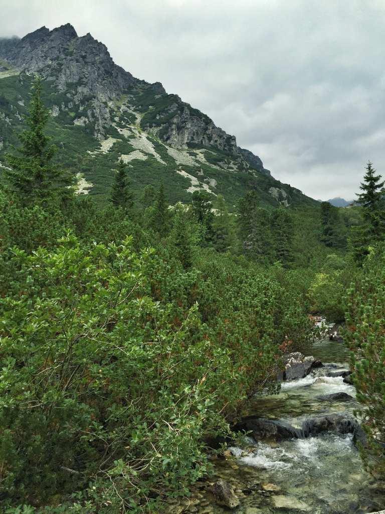 Hohe Tatra Slowakei Wandern