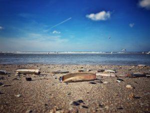 Zandvoort Strand Muscheln