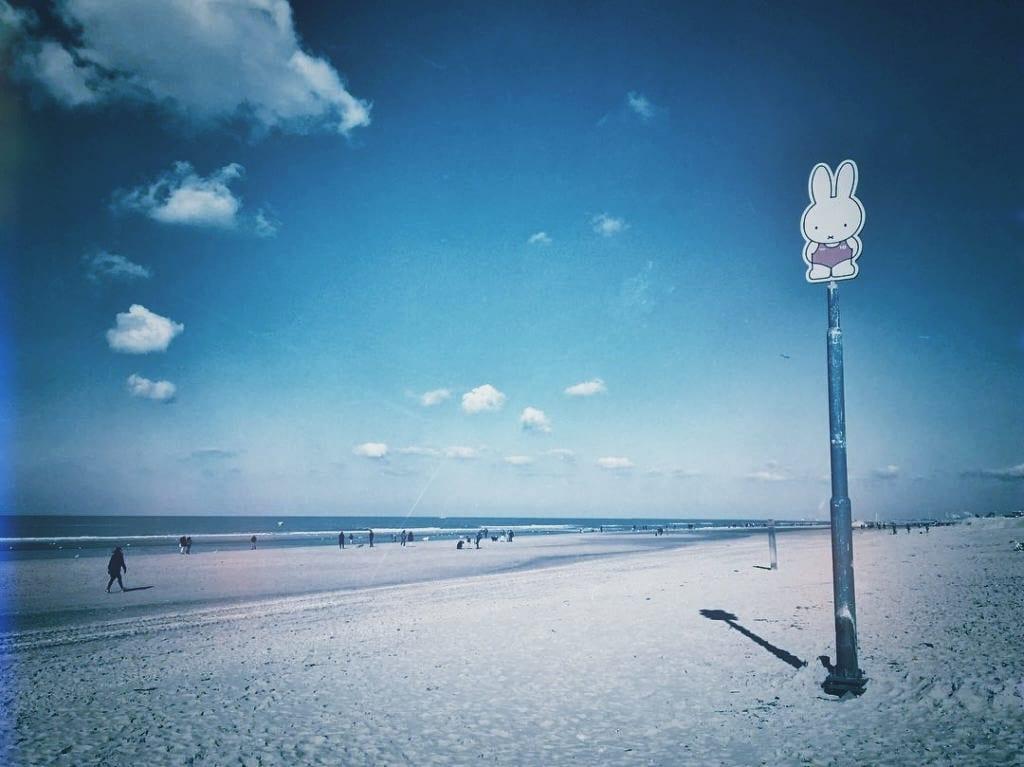 Zandvoort im Winter Ausflug