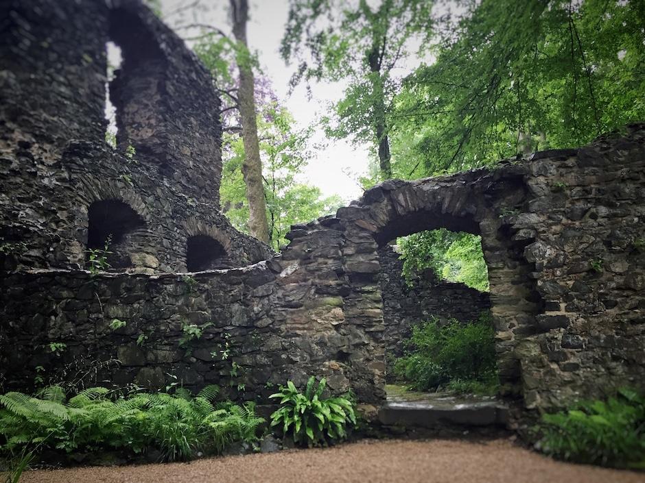 Klosterpark Altzella Ruinen