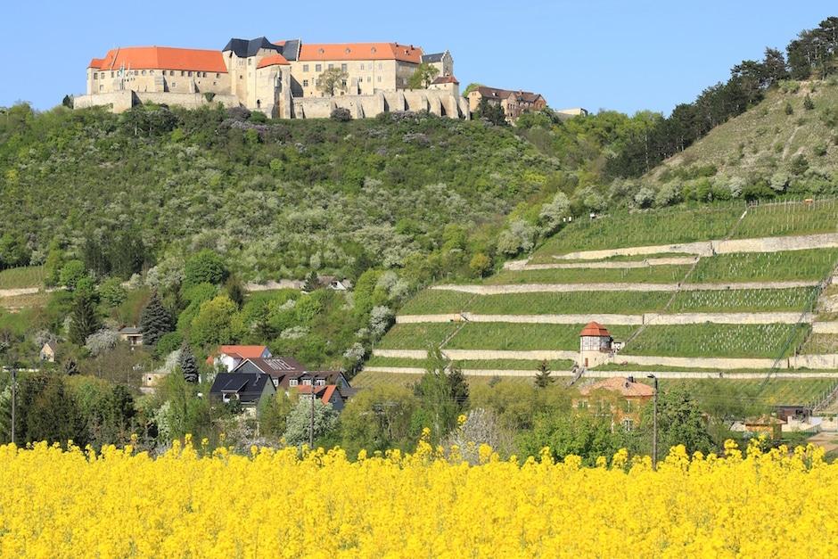 Blick auf Schloss Neuenburg bei Freyburg, eine der Sehenswürdigkeiten in der Saale-Unstrut-Region. Credits: Kora27, Wikimedia