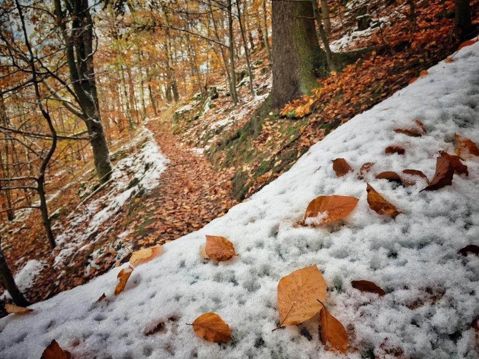 wandern-suedharz_ilfeld_winter_1-thing-to-do
