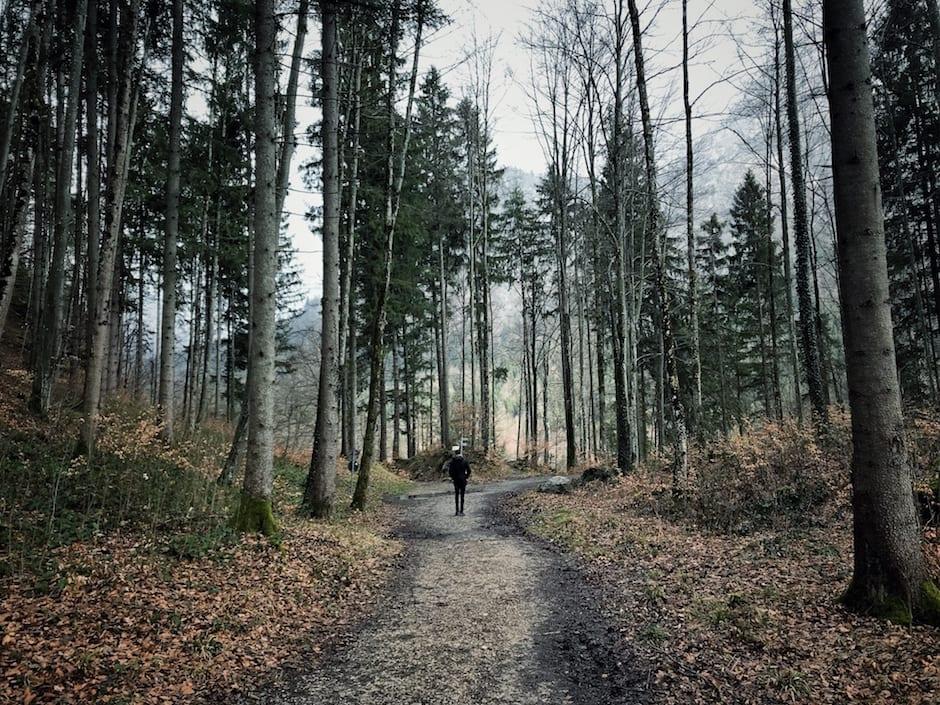 Ausflugsziele Oberbayern Tirol