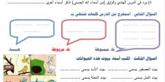 """أوراق عمل لغة عربية لدرس """"العصفورةُ تبني عشها"""" الصف الثالث"""
