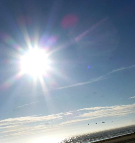 Bright Beach Sky