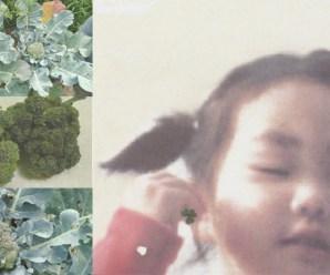 [조혜원의 장수일기] 브로콜리 너마저… 익는구나, 익었구나!