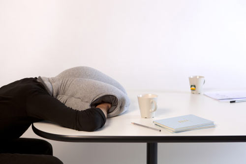 Ostrich Nap Pillow in style fashion  Category