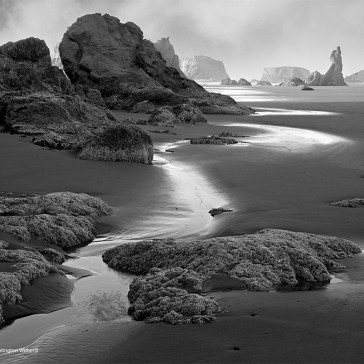Video: How to improve your compositions, from a photographer who worked with Ansel Adams