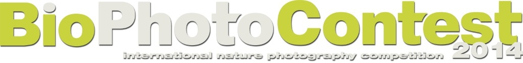 logo BioPhotoContest BioPhotoContest 2014  ​Le foreste temperate​
