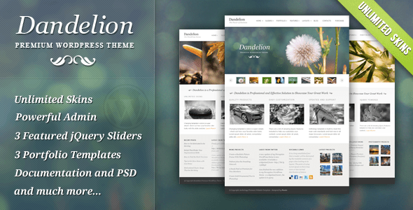 1 presentation.  large preview 35 Bedava ve Premium WordPress Portfolyo Teması