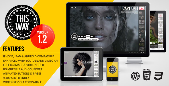 This Way WP Full Video/Image Background with Audio - ThemeForest Item for Sale
