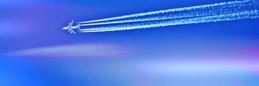 Look To The Skies - bp coyle