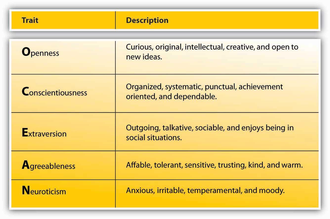 Personality Attitudes And Work Behaviors