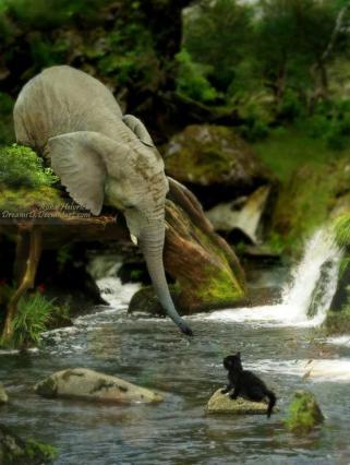 Elefantito y felino Amigos Mundiales