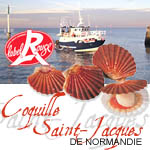 label coquille st jacques