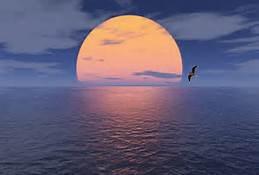 horizon6