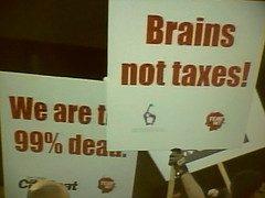 Brains Not Taxes