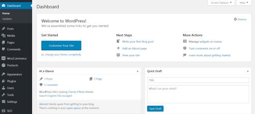 image of WordPress dashboard