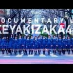 【映画】 平手友梨奈はなぜ…欅坂46ドキュメンタリー映画4月6日公開!
