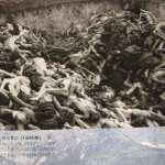 【ロシア】ナチスの集団墓地発掘 レニングラード包囲戦時  [未確認生命体★]