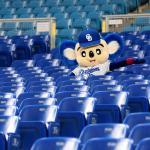 【野球】勝てないだけが理由じゃない…なぜ中日ファンは「ナゴヤドーム」に行かないのか〈dot.〉 #はと  [首都圏の虎★]