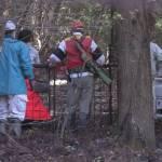 【くま】イノシシを捕獲するため仕掛けた罠にクマ。近づいた70代男性が襲われ怪我。クマは山へ逃げ去る。広島県安芸高田市  [記憶たどり。★]