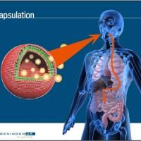 Nanotechnologia w żywności – Lycyferański plan depopulacji.
