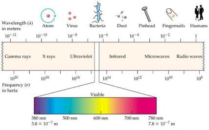 em-spectrum[1][1]
