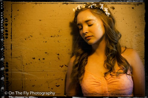 2014-06-22-0365-Fairy-esk-exposure
