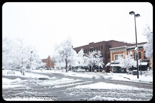 LD-Gerald-Snow-0021-2020-04-16