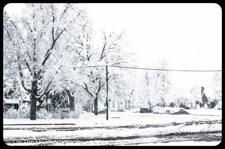 LD-Gerald-Snow-0069-2020-04-16