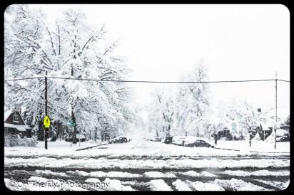 LD-Gerald-Snow-0070-2020-04-16