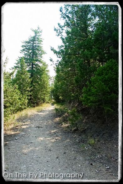 Horsetooth-Mountain-0029-2020-08-25