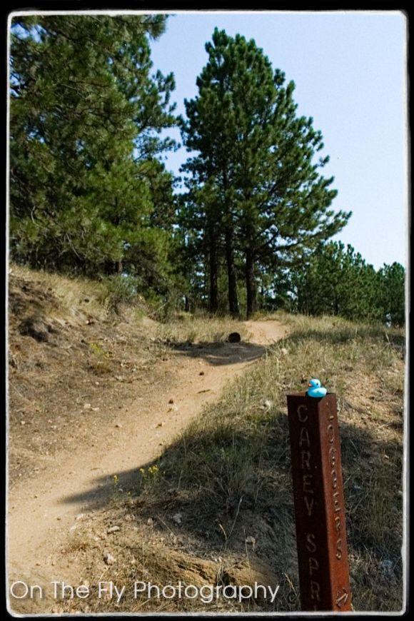 Horsetooth-Mountain-0040-2020-08-25