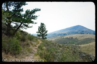 Horsetooth-Mountain-0053-2020-08-25
