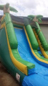 6Paradise Plunge Wet Dry slide