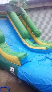 16Paradise Plunge Wet Dry slide