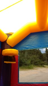 16Purple Passion bounce house