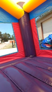 13Purple Passion bounce house