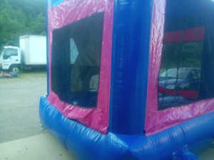 4Frozen Bounce House moonwalk side
