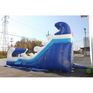21Tidal Wave Wet Dry slide​ side view