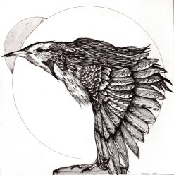 """Fucking Bird   2011   Pen and ink on paper   12"""" x 12"""""""