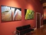 20 North Gallery_04_Luminosity_Wojtkiewicz_reduced
