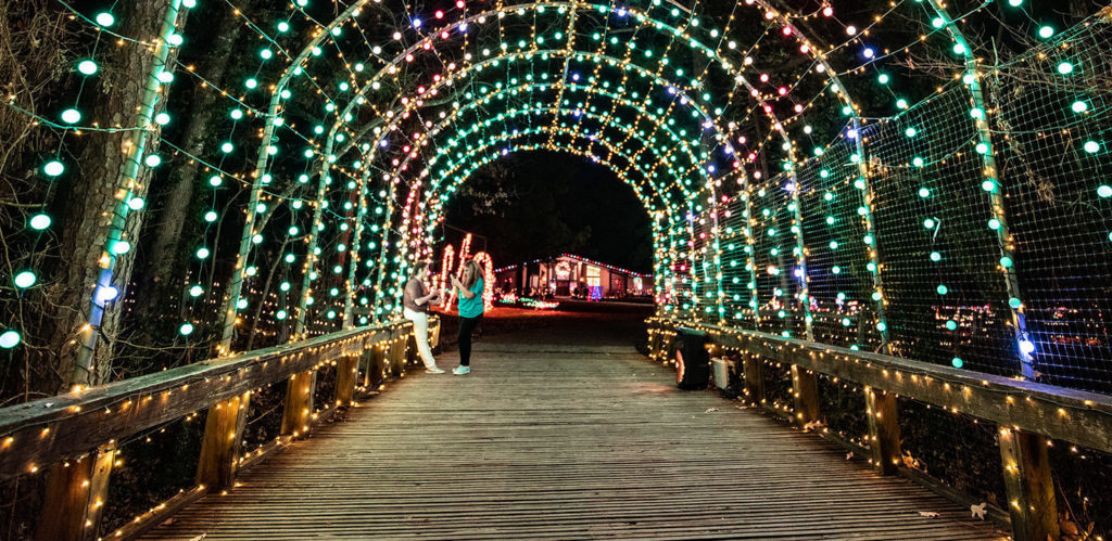 Christmas light tunnel at Christmas in Roseland, American Rose Center