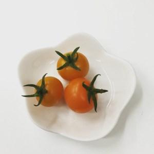 tomato皿