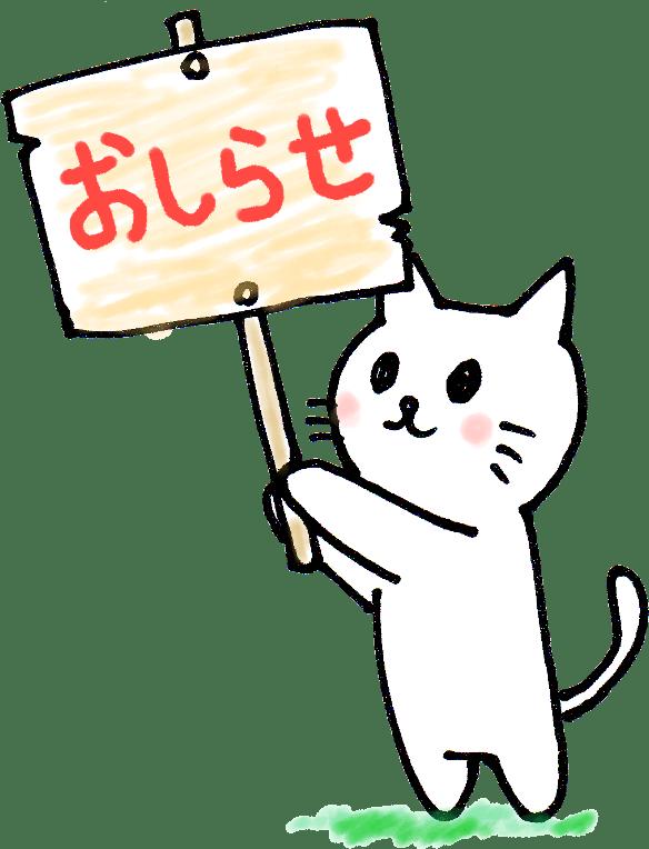 不動産博士㈱5月号チラシ