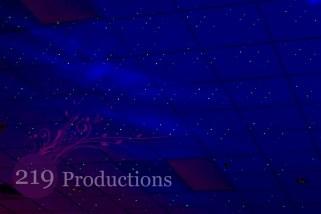 Stars in the Sky Uplighting Wedding Lighting