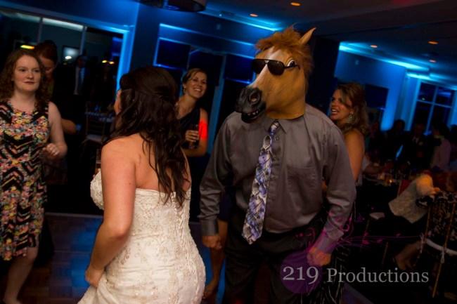 Cedar Lake DJ Horse Head