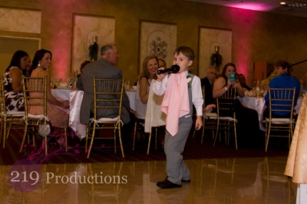 Villa Cesare Pink Uplighting Wedding Singer