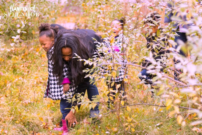 "Motherhood often comes with a false belief the belief that ""mommy knows best. Two things to learn how to trust God's plans for our kids. Click..."